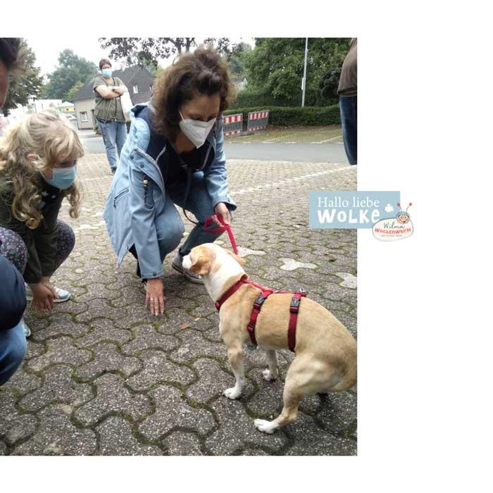 Haustiere-für-Kinder-auf-den-Hund-gekommen-Susanne-Bohne-Hallo-liebe-Wolke-Wilma-Wochenwurm-Mito-Ankunft