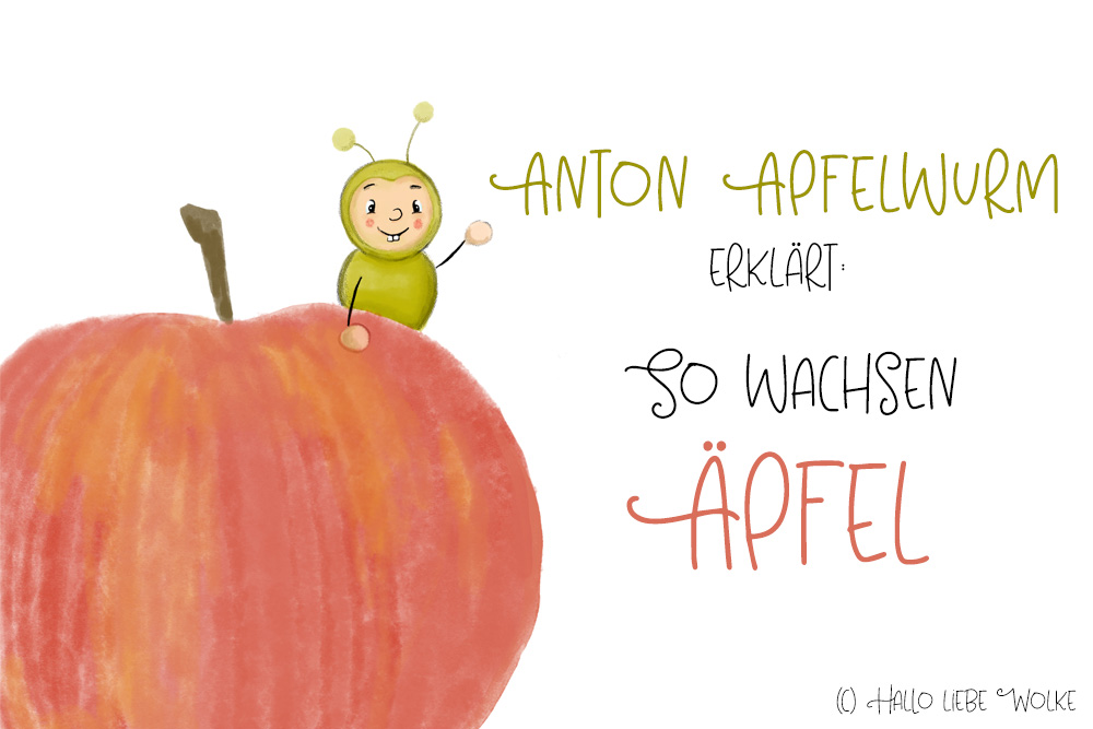 Kindergarten Kita Projekt Apfel Äpfel Geschichte vorlesen Herbst Arbeitsblatt Freebie Vorlage Idee