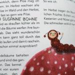 Lerngeschichten mit Wilma Wochenwurm Teil 2 Herbst Winter Pilze_Hallo liebe Wolke_Susanne Bohne_Kinderbuch Kopie