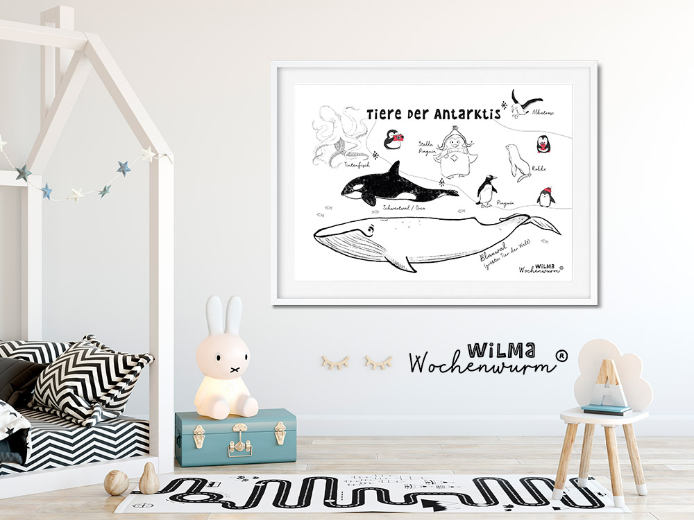 Selbstwert Kinder stärken Stella ist still Gefühle Wilma Wochenwurm Weihnachten Kita Kindergarten Grundschule Südpol Antarktis Poster Kinder Identität Pinguin Wal Poster