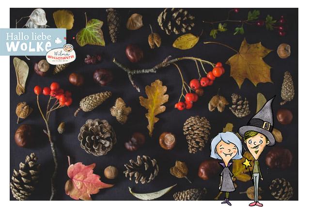 Waldschatzsuche für Kinder im Herbst mit Wilma Wochenwurm kostenloses PDF Vorlage